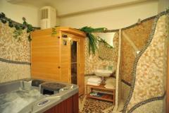 vi%c5%99iv%c3%a1-vana-a-sauna